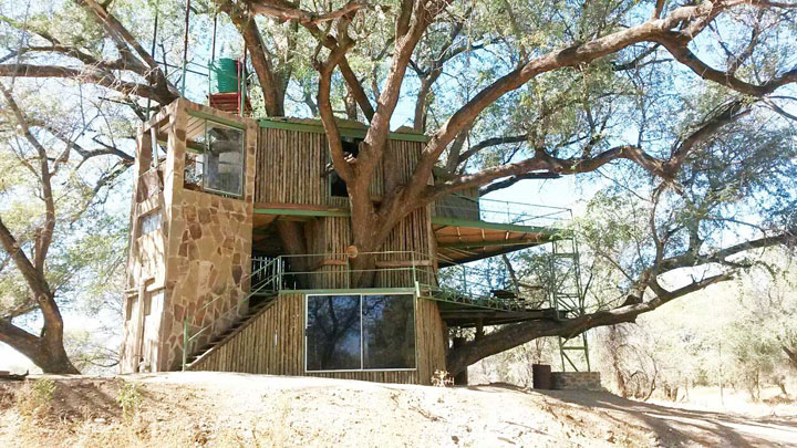 Accommodation in the tree house